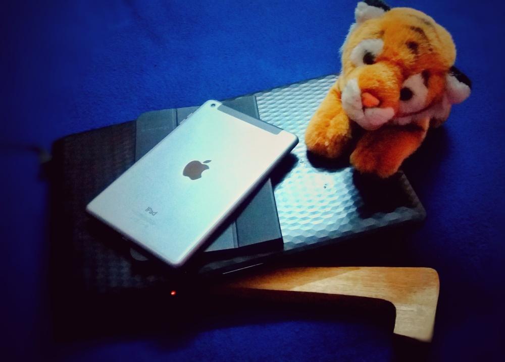 upasanas-computer-with-cute-tiger